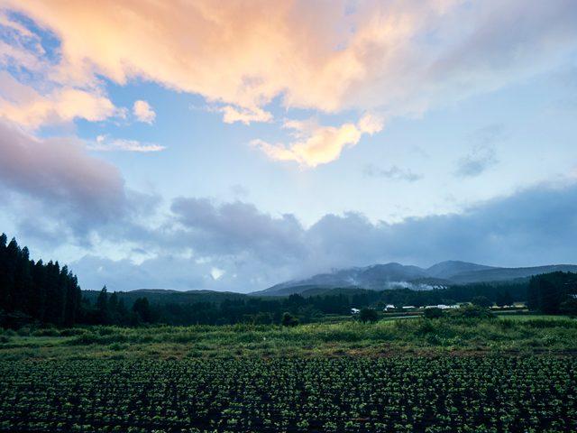 湧水農場から眺める栗野岳/8月の夜明け