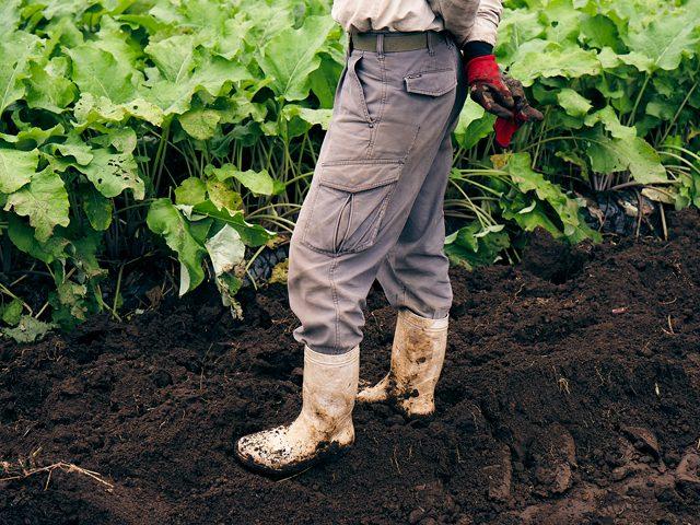 草堆肥でここまでの土を作る